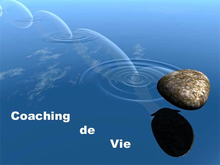coach vie